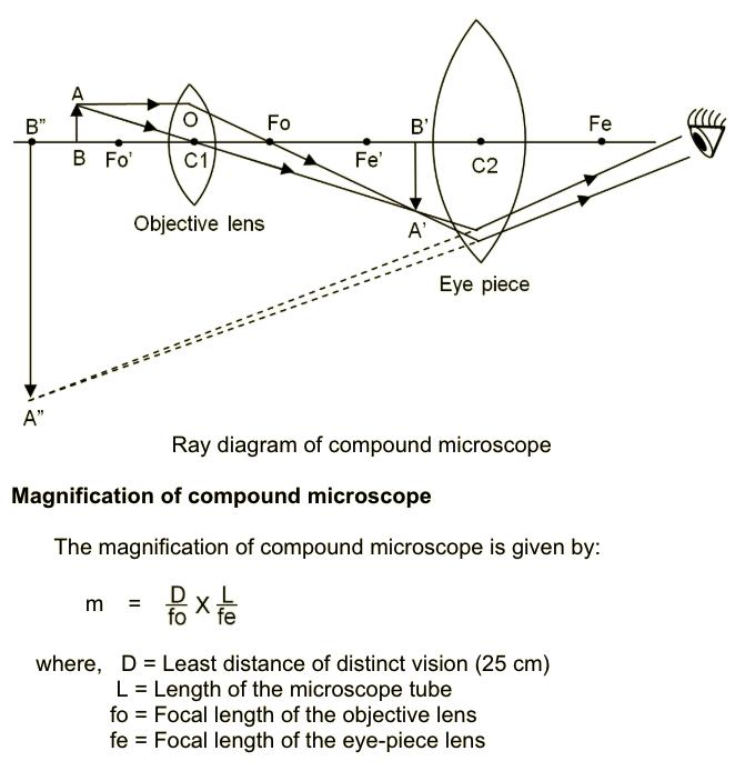 Simple Microscope Lens Diagram