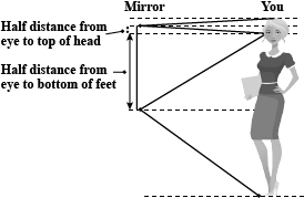 The Minimum Length Of A Plane Mirror Required To View The Full Image Of A Person 6 Feet Tall Is