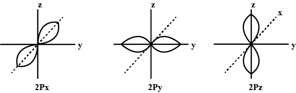 The 2px 2py And 2pz Orbitals Of An Atom Have Identical Shapes But Differ In Their Orientation In Space